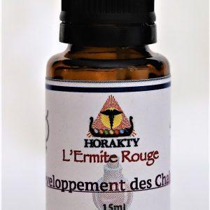 alchimie - élixir à base de quintessence alchimique pour le développement des chakras